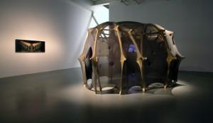 Ernesto Neto, After Utopia, Installation view, ph. courtesy Isisuf